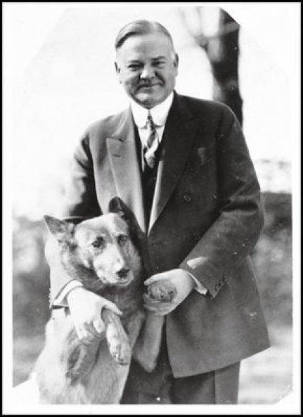 King Tut  Herbert Hoover